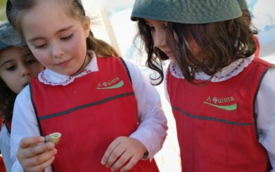 Descoberta de Caracóis – Jardim de Infância